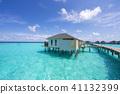남국 몰디브 몰디브 바다 하와이 여름 해외 워터 빌라 결혼식 모래 41132399
