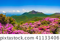 Miyama Kirishima盛开,雾岛的新鲜绿山 41133406