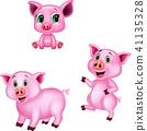 Cartoon pig collection set 41135328