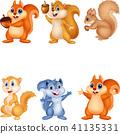 Cartoon squirrel collection set 41135331