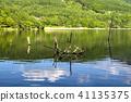 landscape, scape, scene 41135375