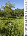 scape, scene, scenery 41135387