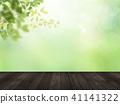Background - Fresh green - Wood deck 41141322
