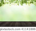 Background - Fresh green - Wood deck 41141886