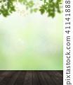 Background - Fresh green - Wood deck 41141888