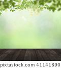 Background - Fresh green - Wood deck 41141890