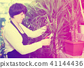 Shop assistant showing yucca trees 41144436