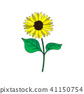 Sunflower with green leaves in flat style 41150754