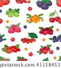 Berry vector berrying mix of strawberry blueberry raspberry blackberry and red currant illustration 41158453