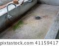 คอนกรีต,ก๊อกน้ำ,แหล่งน้ำ 41159417