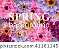 Vintage Spring background with colorful daisy 41161145
