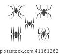 Spider Logo design vector illustration 41161262