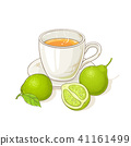 bergamot tea illustration 41161499