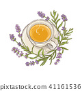 lavender tea illustration 41161536