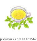 melissa tea illustration 41161562