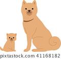 狗 狗狗 坐下 41168182