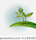 Cartoon praying mantis on leaf 41168360