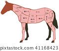 馬肉 部位 部分 41168423