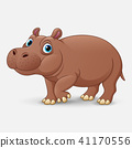 cartoon, hippo, cute 41170556