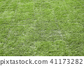 grass or lawn horizontal background 41173282