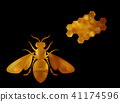 vector, bee, insect 41174596