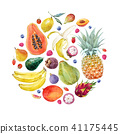 Watercolor exotic fruits composition 41175445