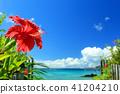 沖繩藍色海和藍天和紅色木槿 41204210