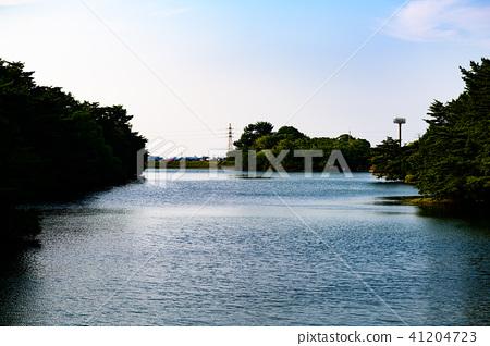 공원 수변 산책 41204723