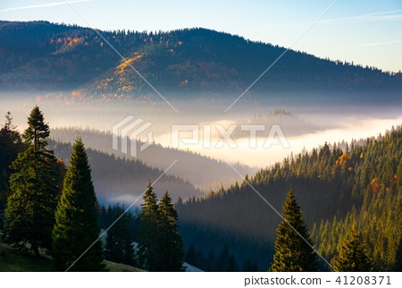 gorgeous foggy sunrise in mountains 41208371