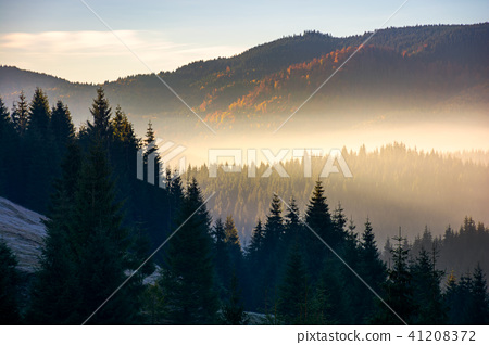 glowing fog in mountains at sunrise 41208372