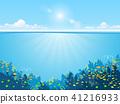 ocean underwater fish 41216933