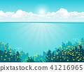 Ocean underwater world with animals 41216965