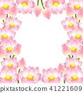 莲花 花朵 花 41221609