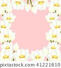 莲花 花朵 花 41221610
