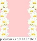莲花 花朵 花 41221611