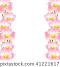 莲花 花朵 花 41221617