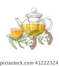 yarrow tea illustration 41222324