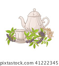 elderberry, flower, tea 41222345