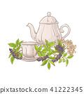 elderberry tea illustration 41222345