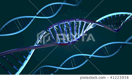 damaged ribonucleic acid or dna strand 41223938