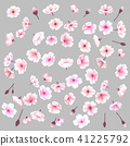 Sakura flowers. Spring background. Vector illustration. 41225792
