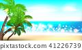 Summer time seashore palm landscape 41226739