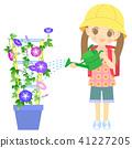 ผักบุ้ง,เด็กผู้หญิง,ดอกไม้ 41227205