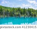 아오이이케, 청의 호수, 연못 41230415