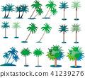 ต้นปาล์ม,ไม้,โรงงาน 41239276