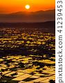 """""""富山縣""""稻田的早晨景觀和水彩的礪波平原""""從Ouyoyama"""" 41239453"""