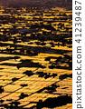 """""""富山縣""""稻田的早晨景觀和水彩的礪波平原""""從Ouyoyama"""" 41239487"""