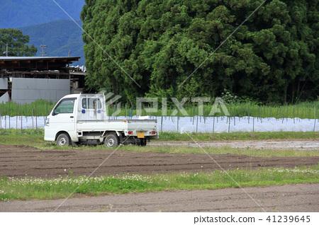 輕型卡車鄉下鄉下風景 41239645