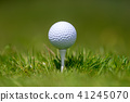 golf ball grass 41245070