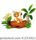 卡通 狮子 婴儿 41253021